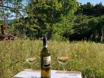 Eerste wijntjes bij het vakantiehuis