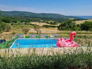Opzet zwembad voor een verfrissende plons